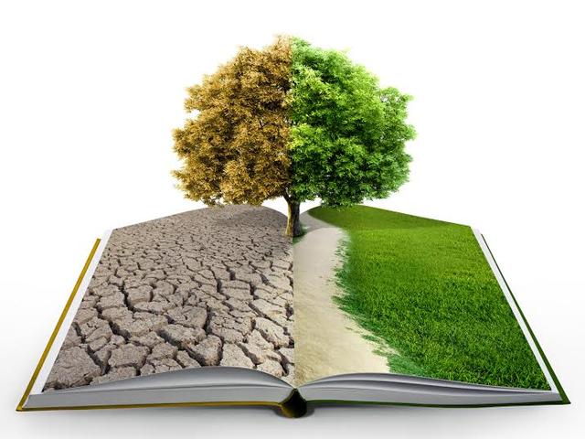 Environmental liability in Romania